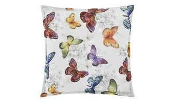 Schwienhorst Auflage   Butterfly